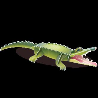 Crocodile Doodad