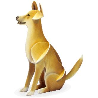 Dingo Doodad