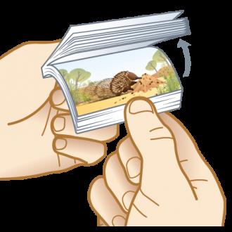 Hungry Echidna 'Flippin' Fun Aussie Flip Animated Note Pad