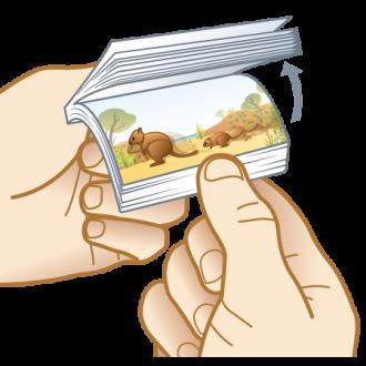 Knockabout Quokkas 'Flippin' Fun Aussie Flip Animated Note Pad