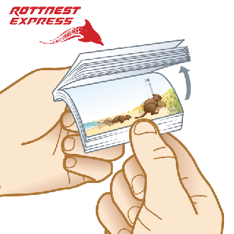 Rottnest Express 'Flippin' Fun Flip Animated Note Pad